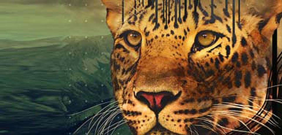 طراحی گرافیک | ساخت انیمیشن | انیمیشن 3بعدی| شرکت تبلیغاتی ویرا ورنا